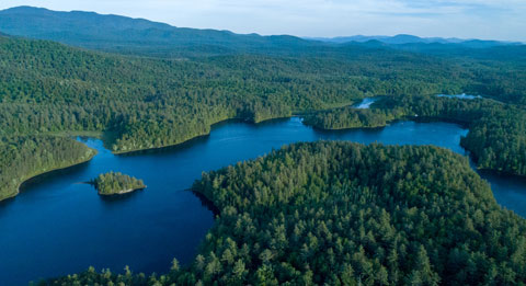 Coreys' Cure - Stony Creek Pond Camp