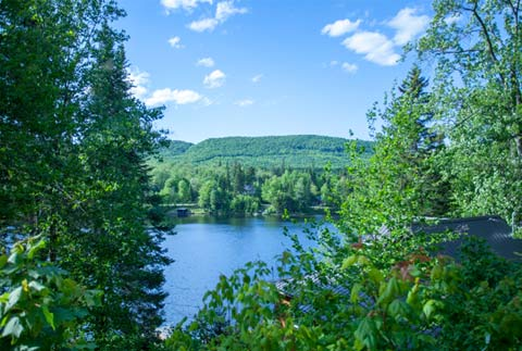 Pond Perfect – Owls Head Waterfront Camp